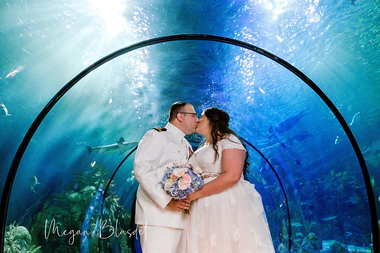Deep, deep love at Moody Gardens Aquarium