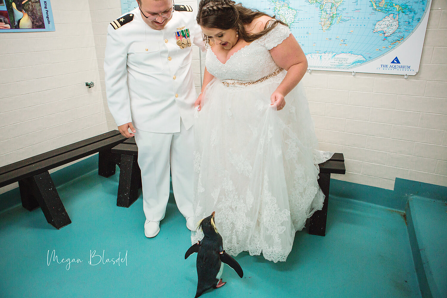 Penguin encounter for couple's formals