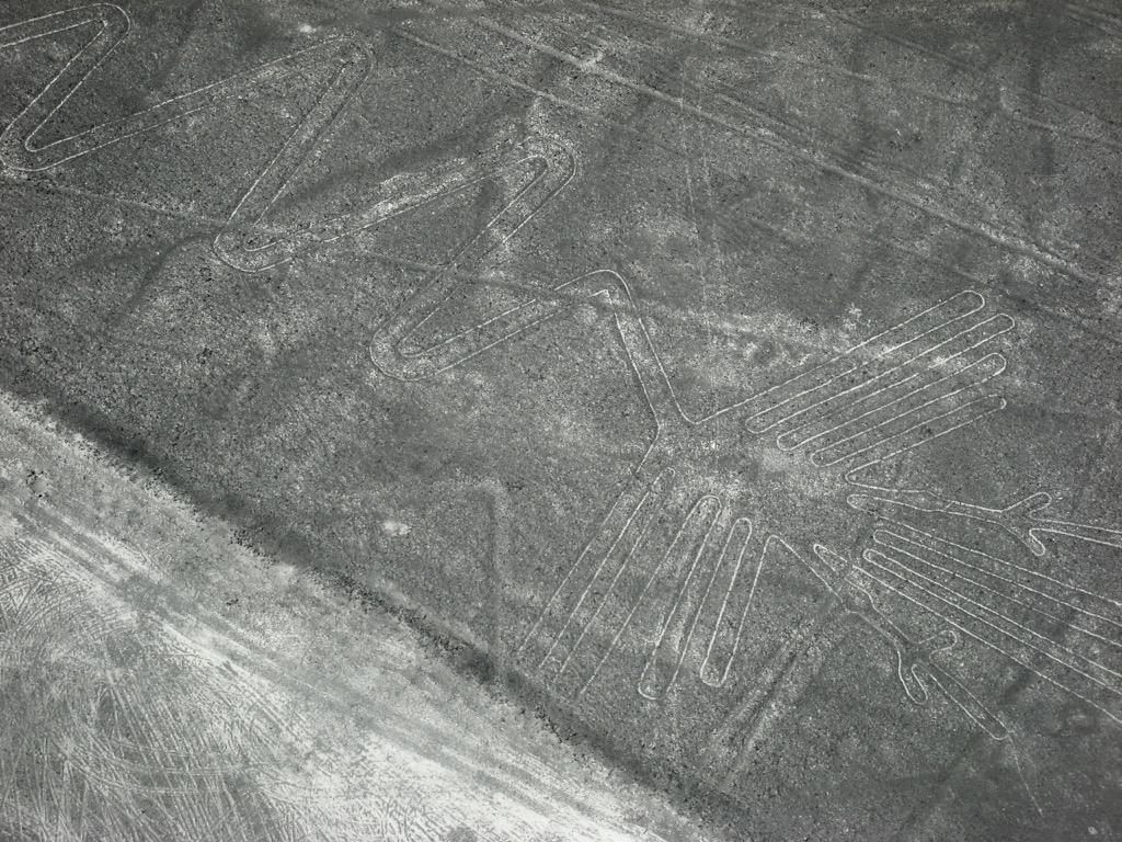 Part of Flamingo-Nasca Lines