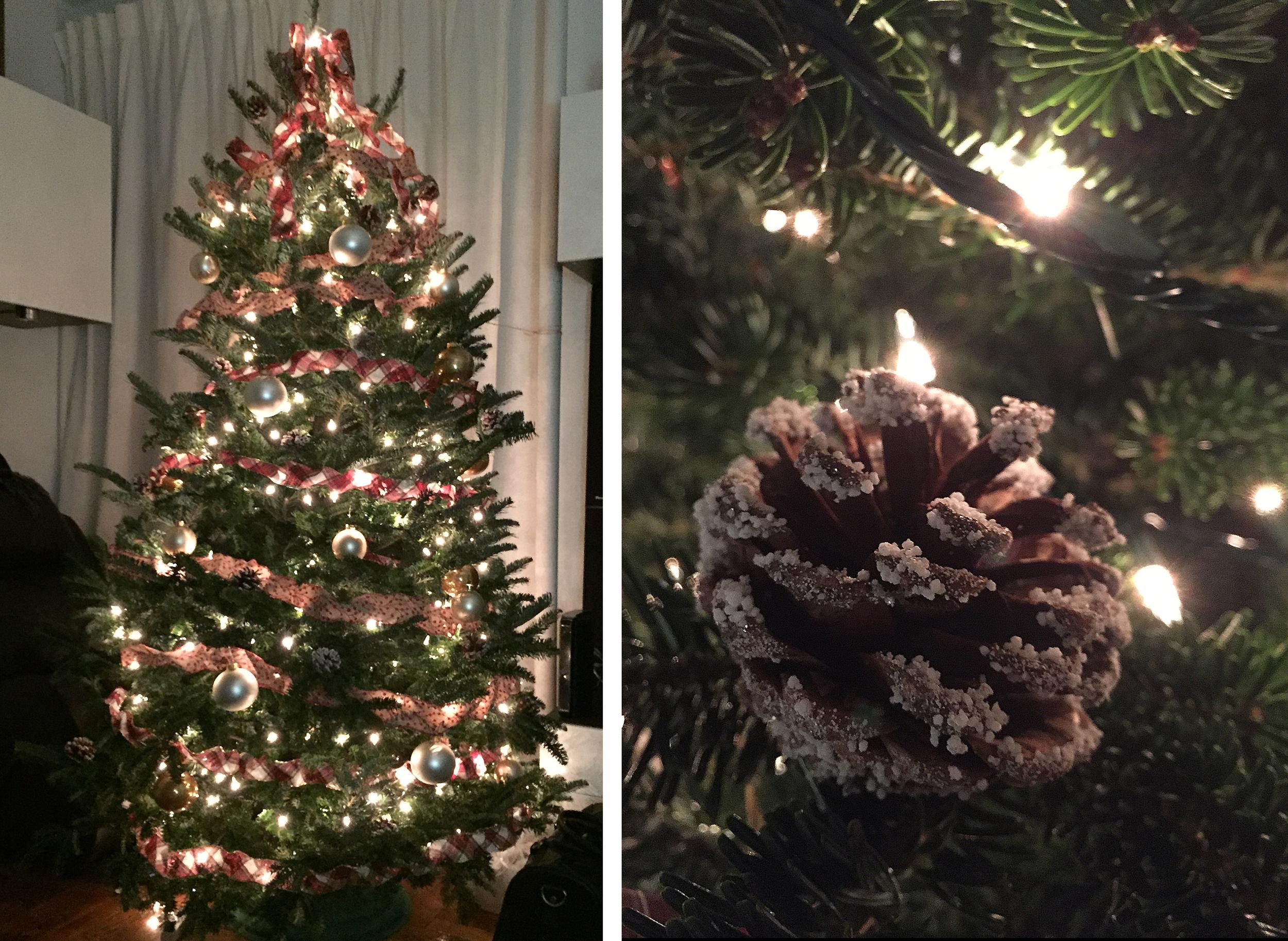 Christmas tree 100% natural. 2015 Holidays