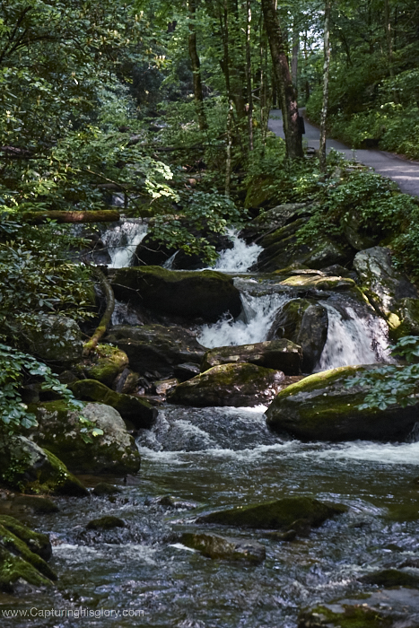 The path to Anna Ruby Falls