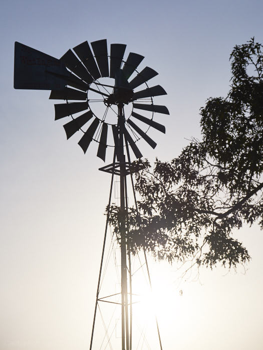 Windmill on the property of the Shrine of the Most Blessed Sacrament, Hanceville, Alabama