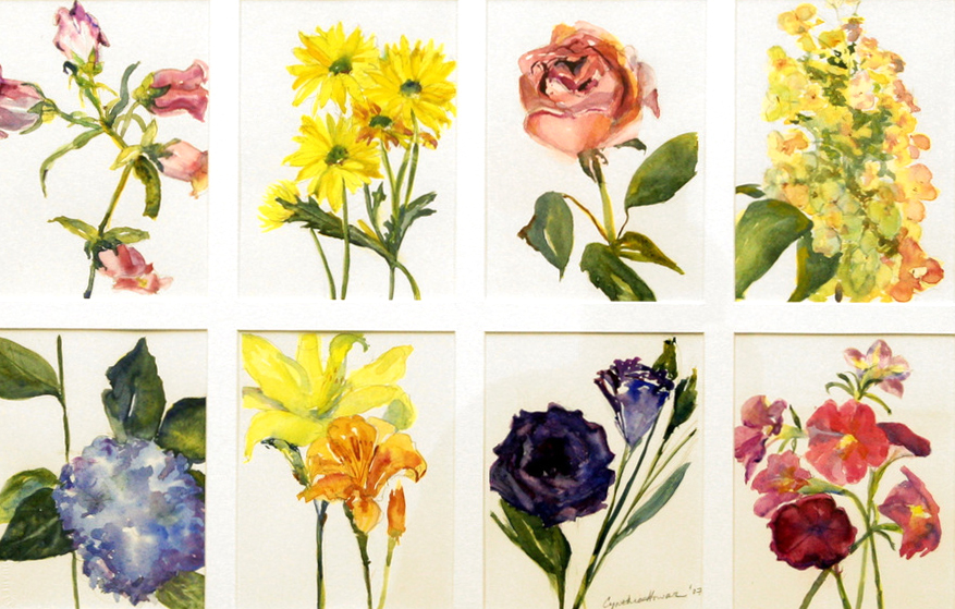 """""""Ab Array of Flowers"""""""