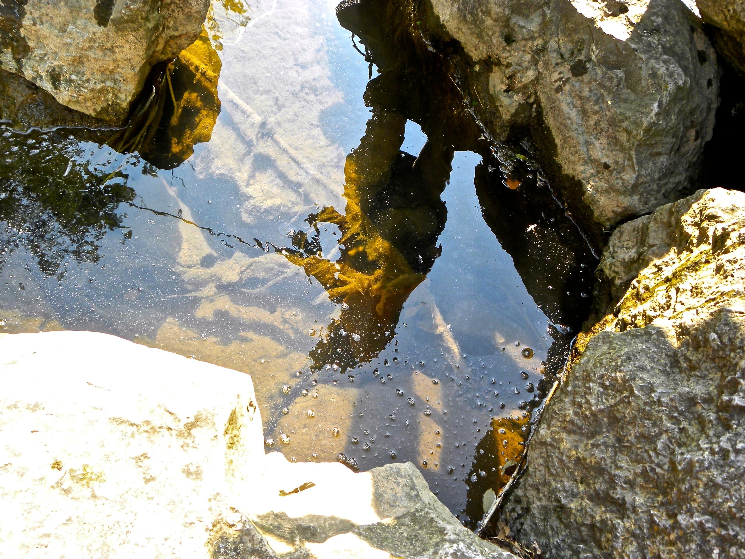 """Fishing Reflection"" Tisha Clinkenbeard"