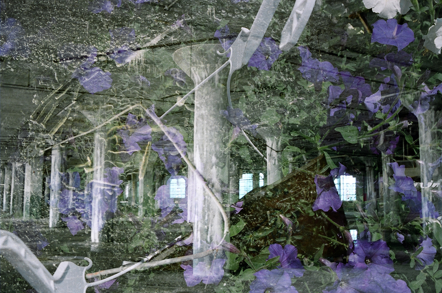 """Blossom FactoryI"" by Vivian Bond"