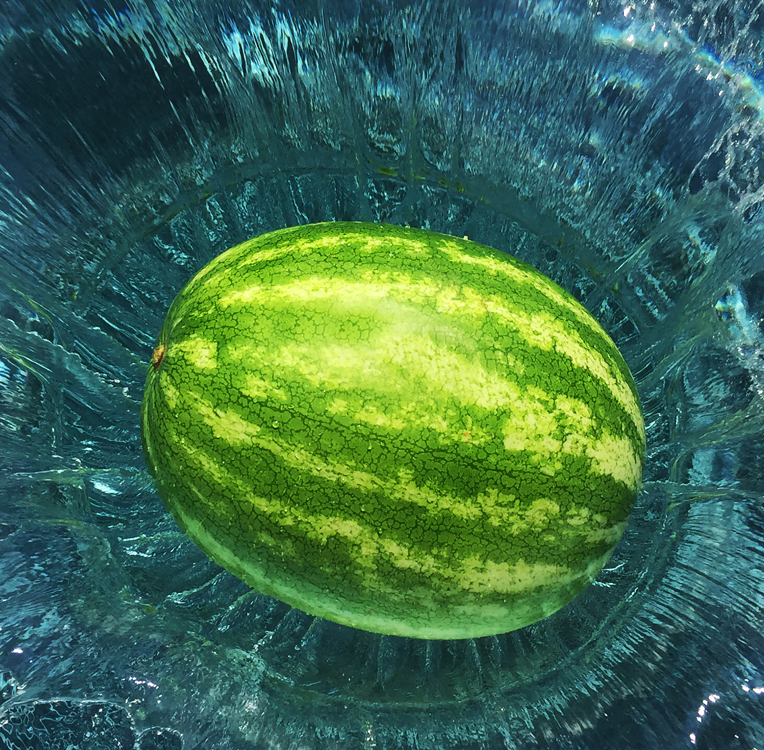 "Laura Zazanis for ""Melon"""