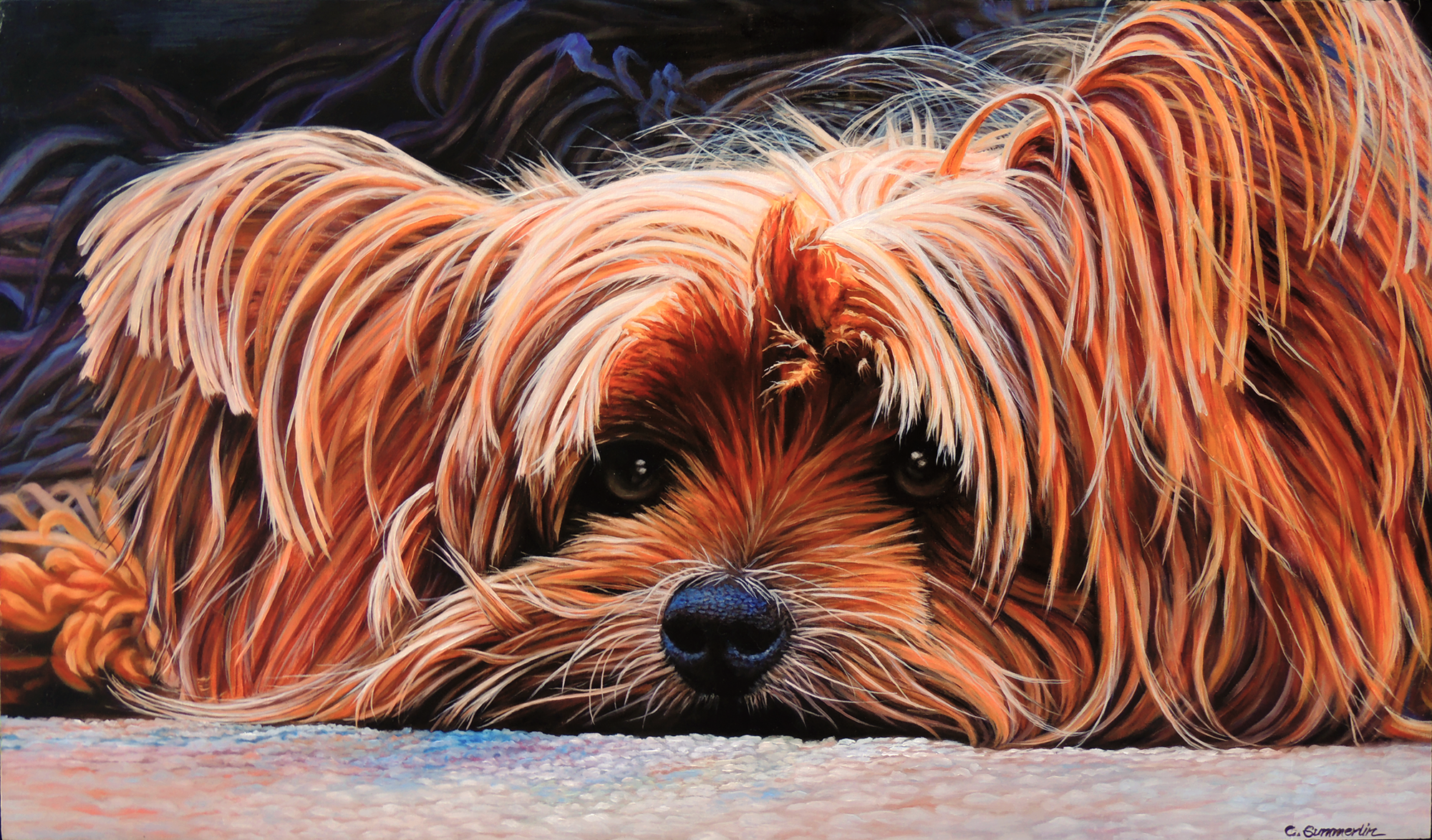 """Yorkie"" by Carol Summerlin"