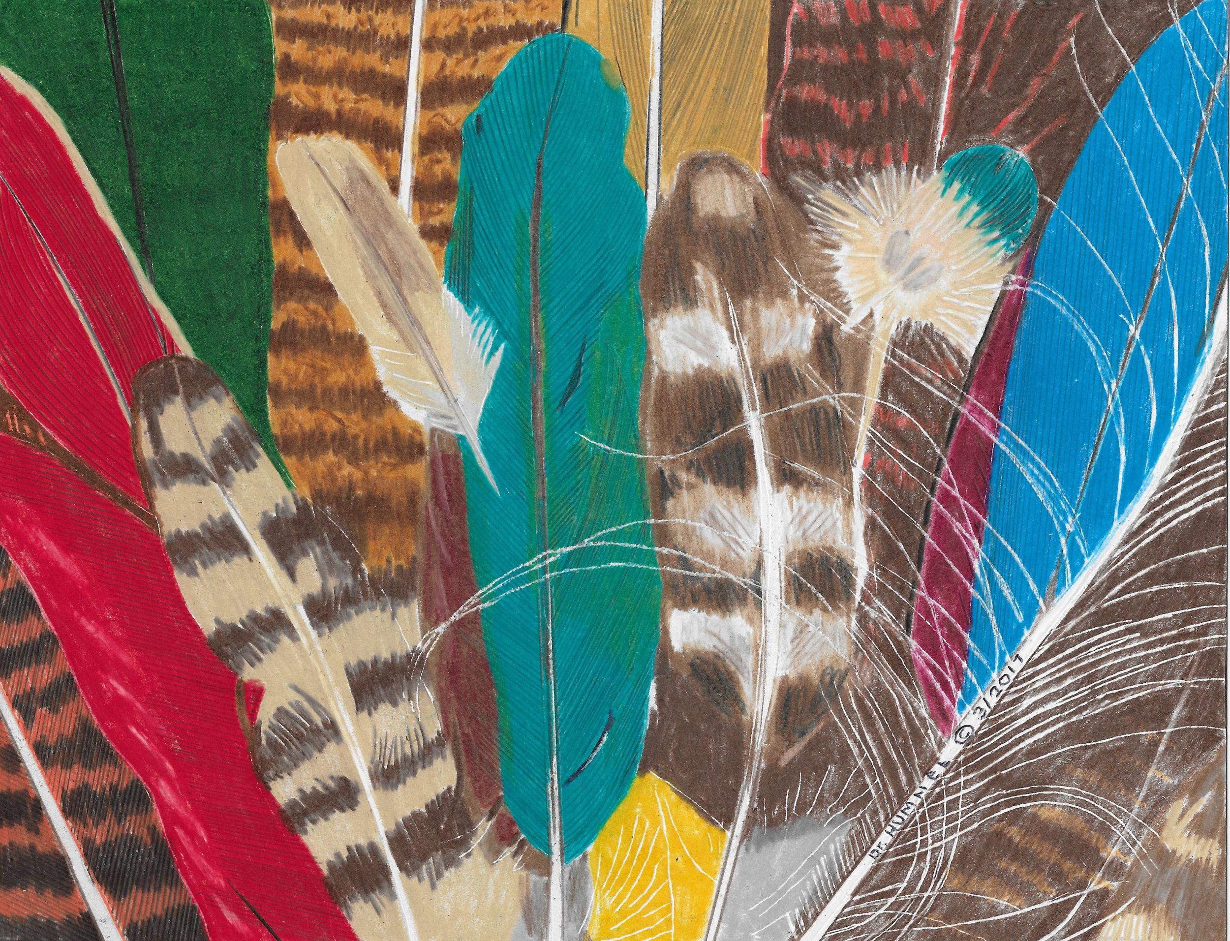 20496926-Feathers.jpg