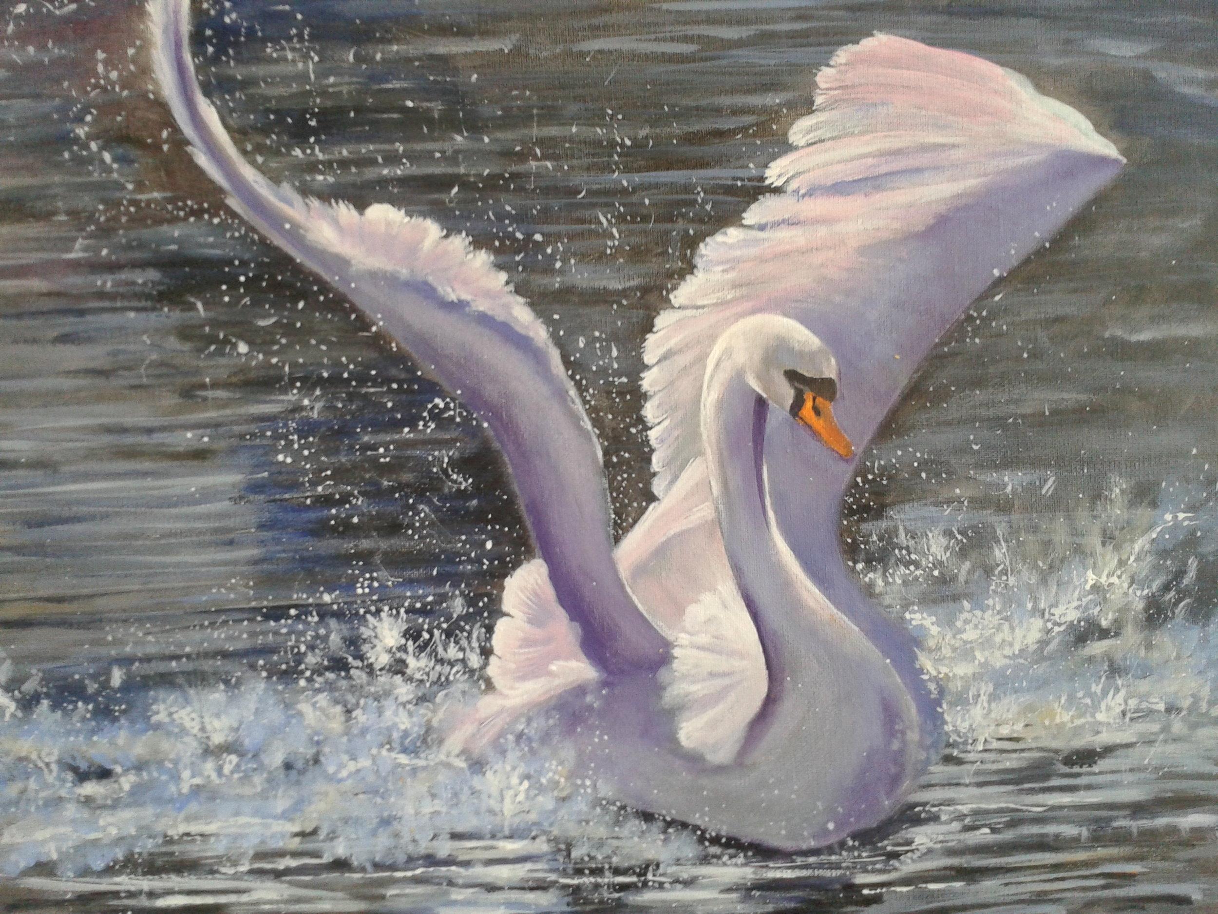 Swan Dive.jpg