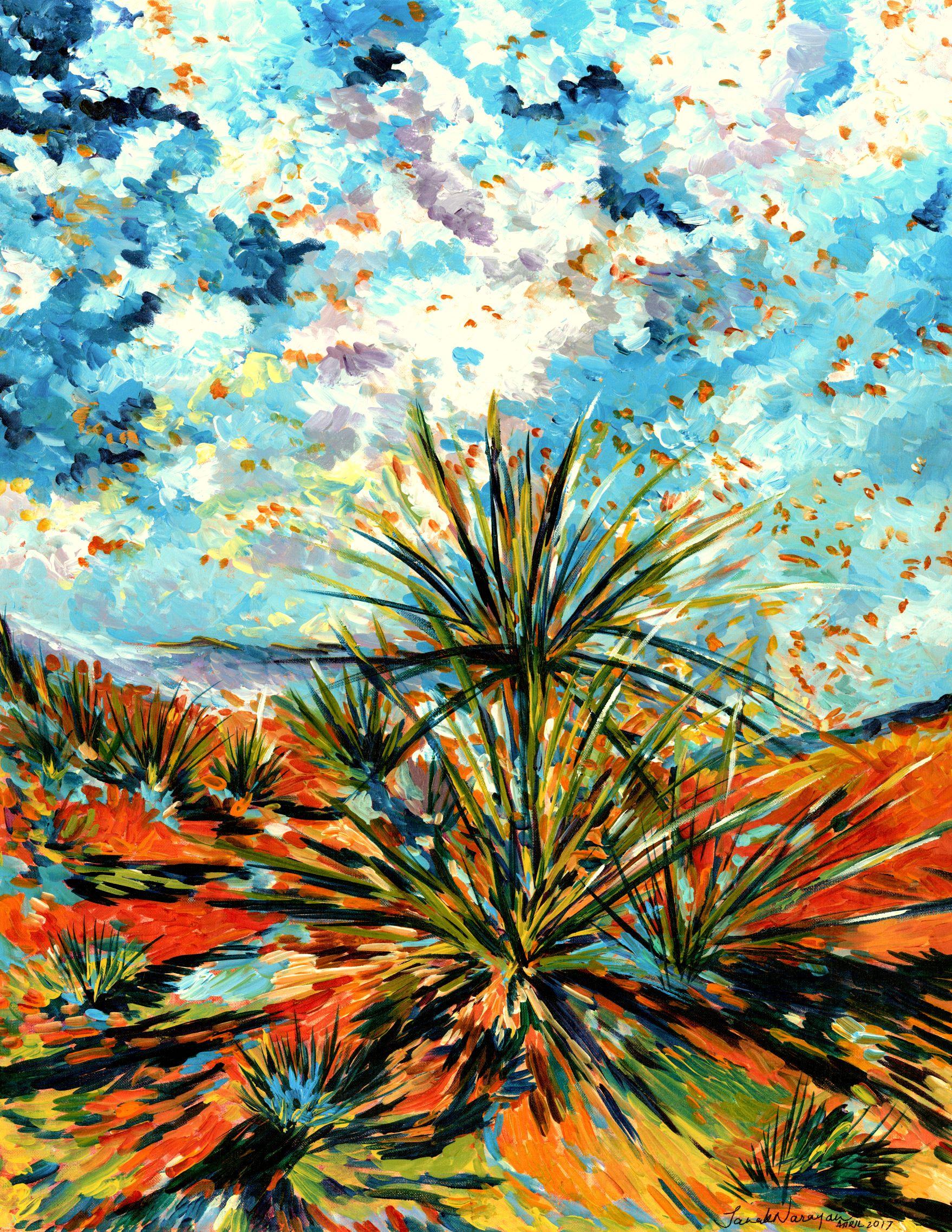 20496930-Desert Ablaze.jpg