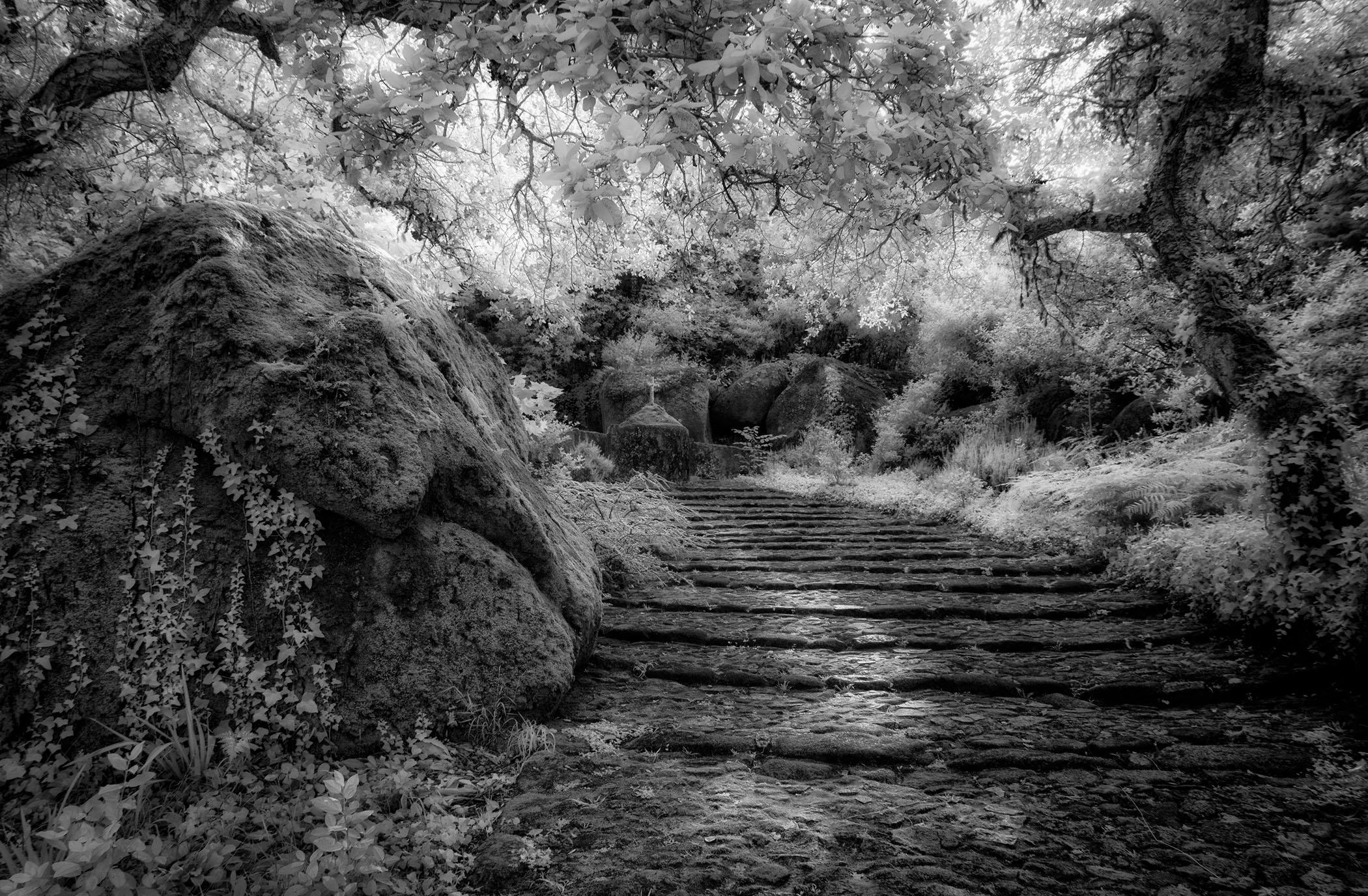 20496934-RondaAnderson_Jeronimos Monastery_Photography14.5x9.25_100_2017.jpg