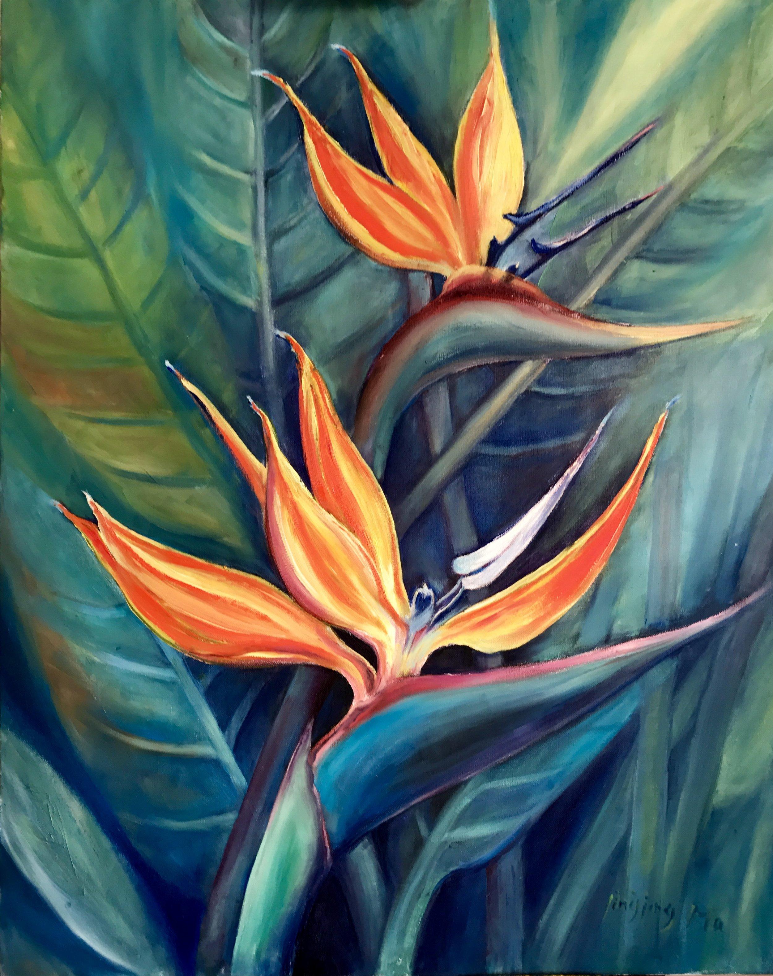 Bird of Paradise Flower.jpeg