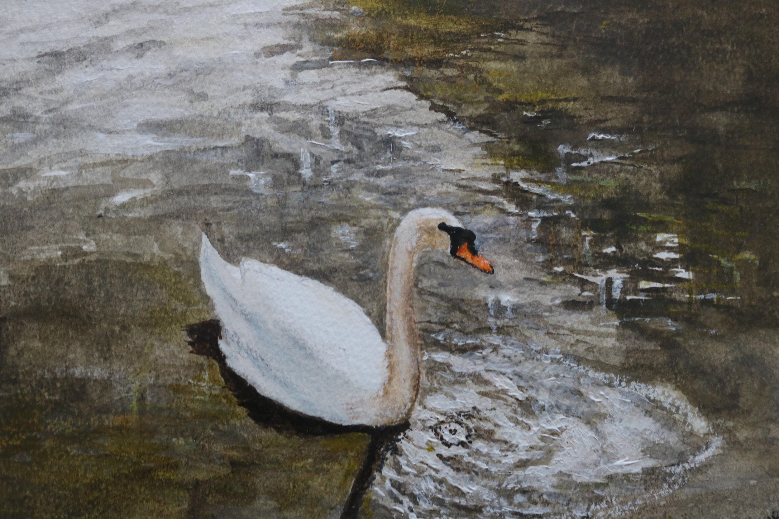 Swan on Fairhaven Lake St Anne's Lytham.jpg
