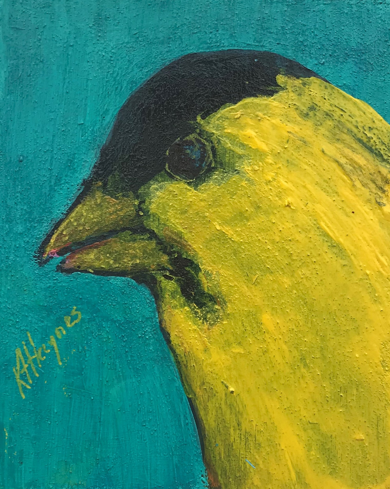 "SOLD - Fierce Finch   5"" x 4""  acrylic on canvas"