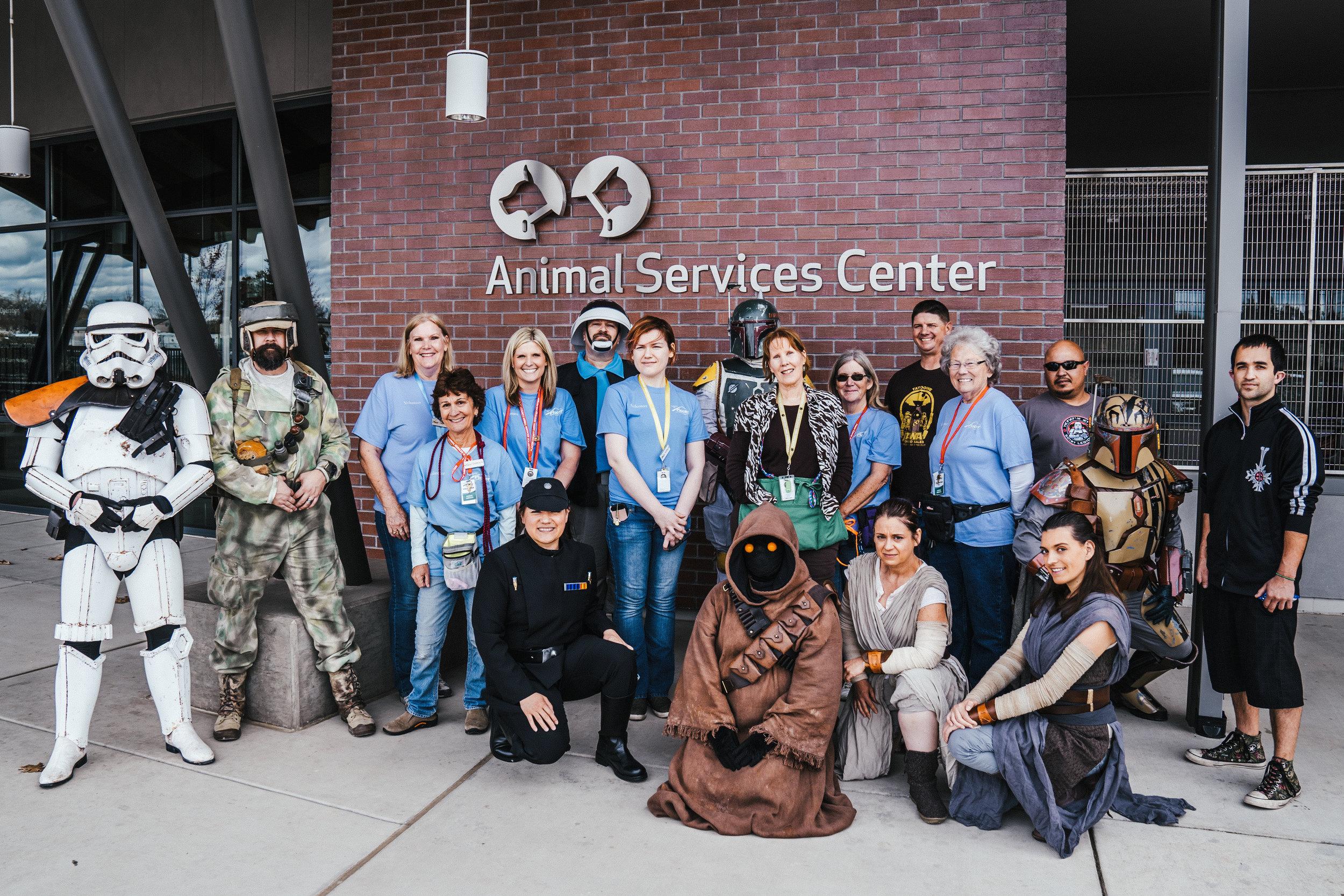 animal shelter 75.jpg