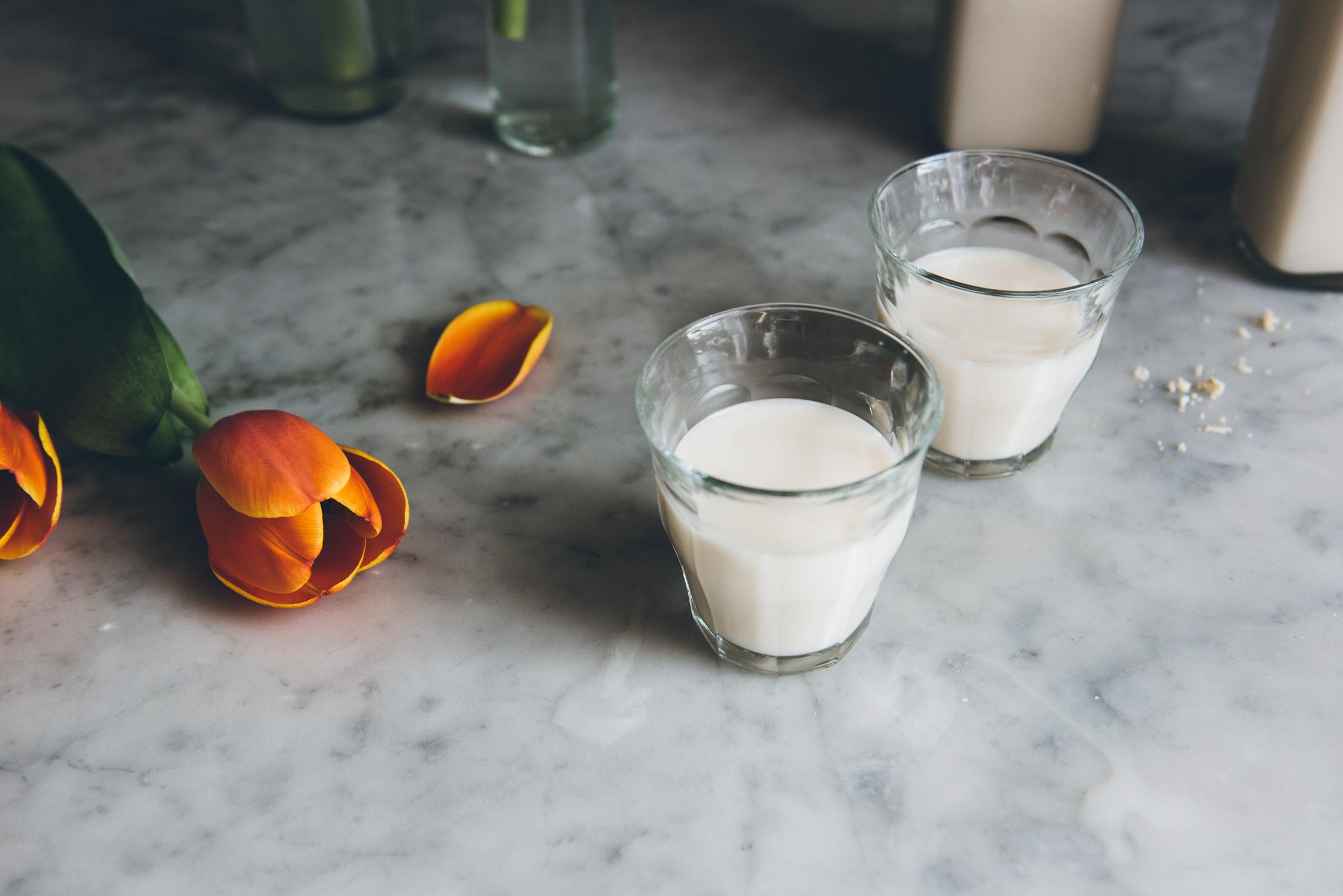 Hazelnut Milk | O&O Eats