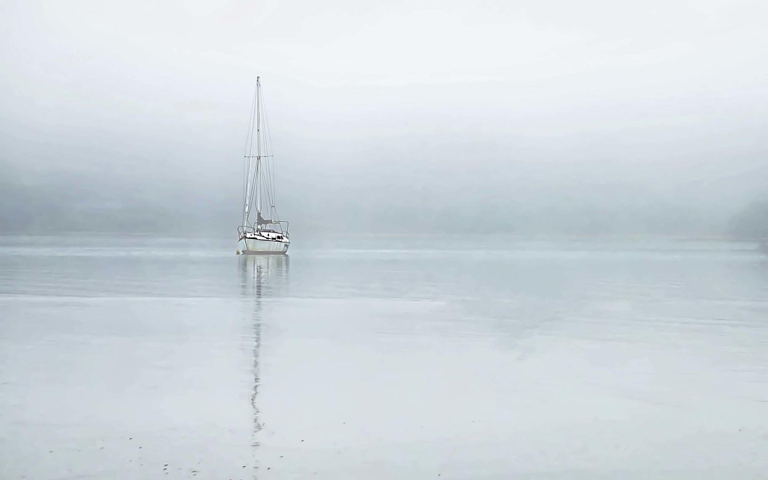 Misty morn, McLeod Bay ,Whangarei Heads, Northland, New Zealand