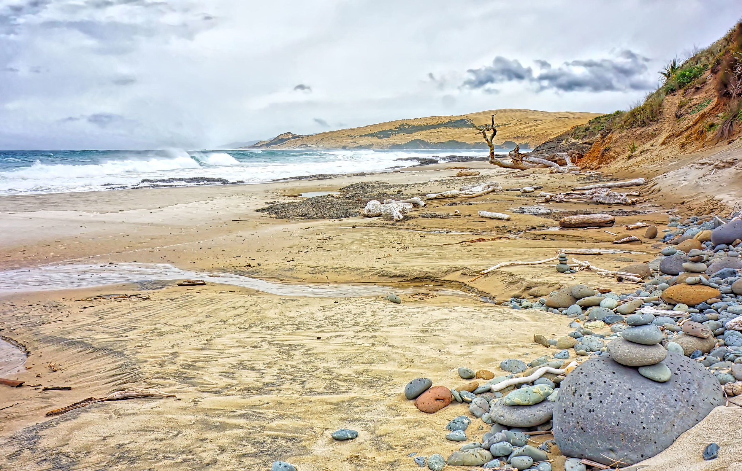 Beach near Opononi/Omāpere, Northland, New Zealand