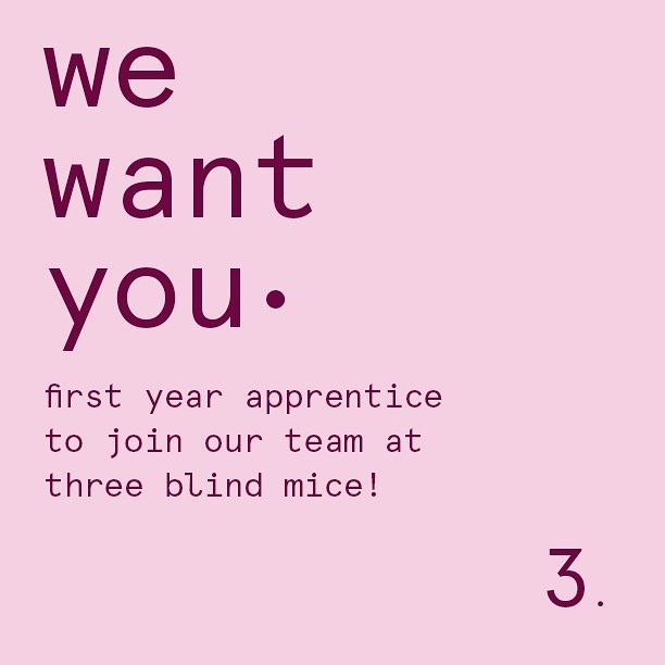 We're currently looking for a first year apprentice to join our amazing team at three blind mice! If you're passionate about hair and looking for an exciting new career opportunity, we'd love to hear from you • call us on 03 9077 5690 or email your resume to info@threeblindmicesalon.com.au • No experience needed just a willingness to learn and available to start ASAP!
