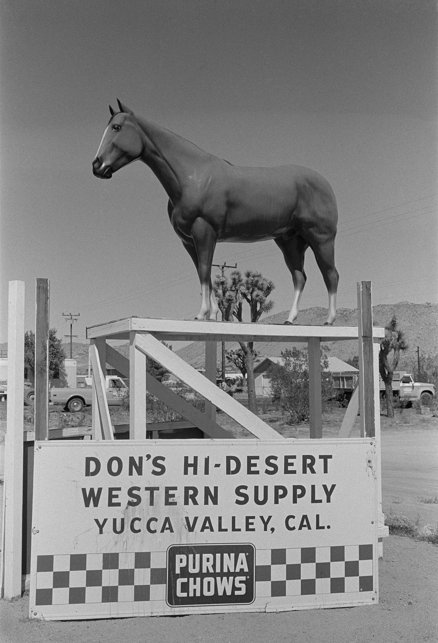 Don's Hi Desert.jpg