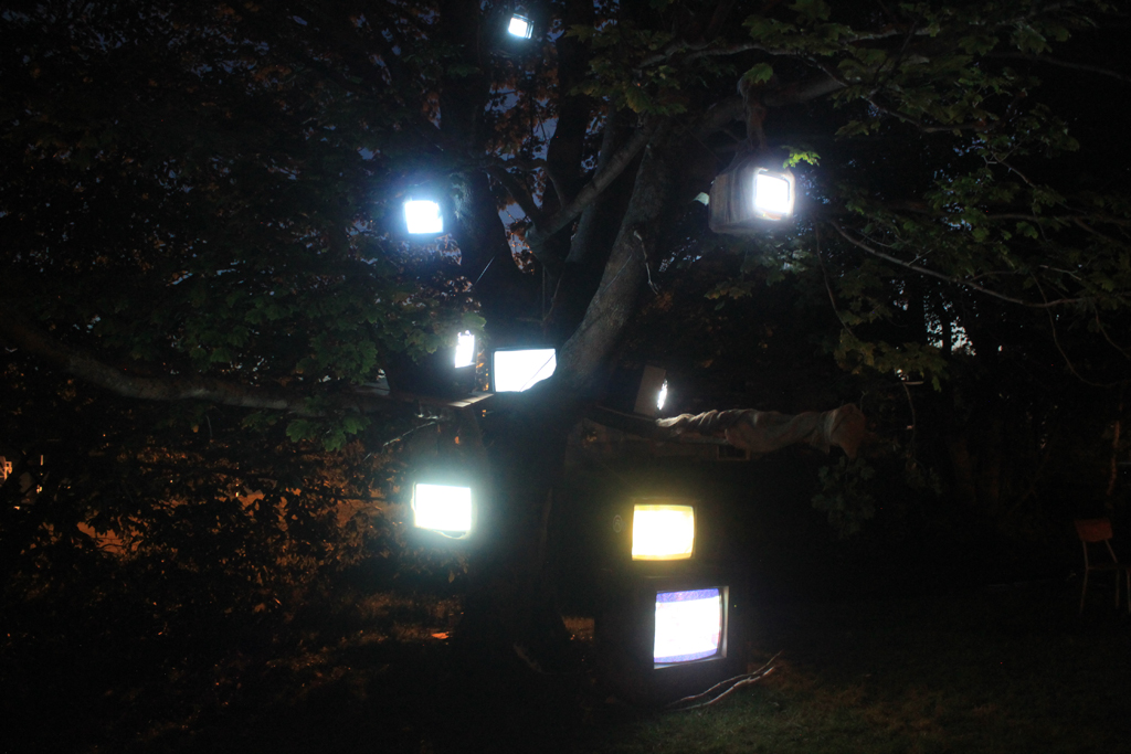 Nightlights Like Fireflies