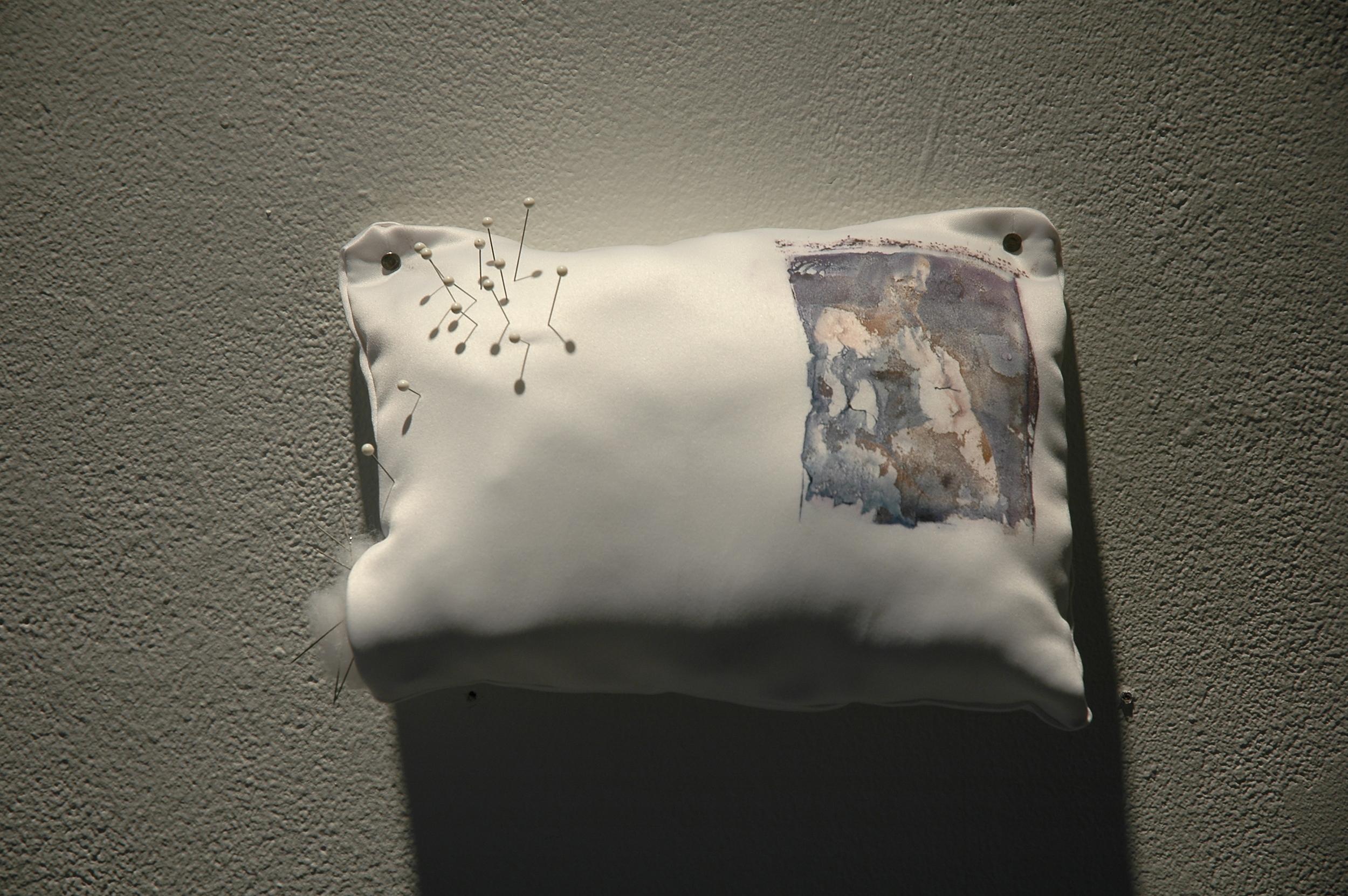 Cushion: 2005