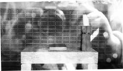 Second WB Image Capturing the Shrine II.jpg