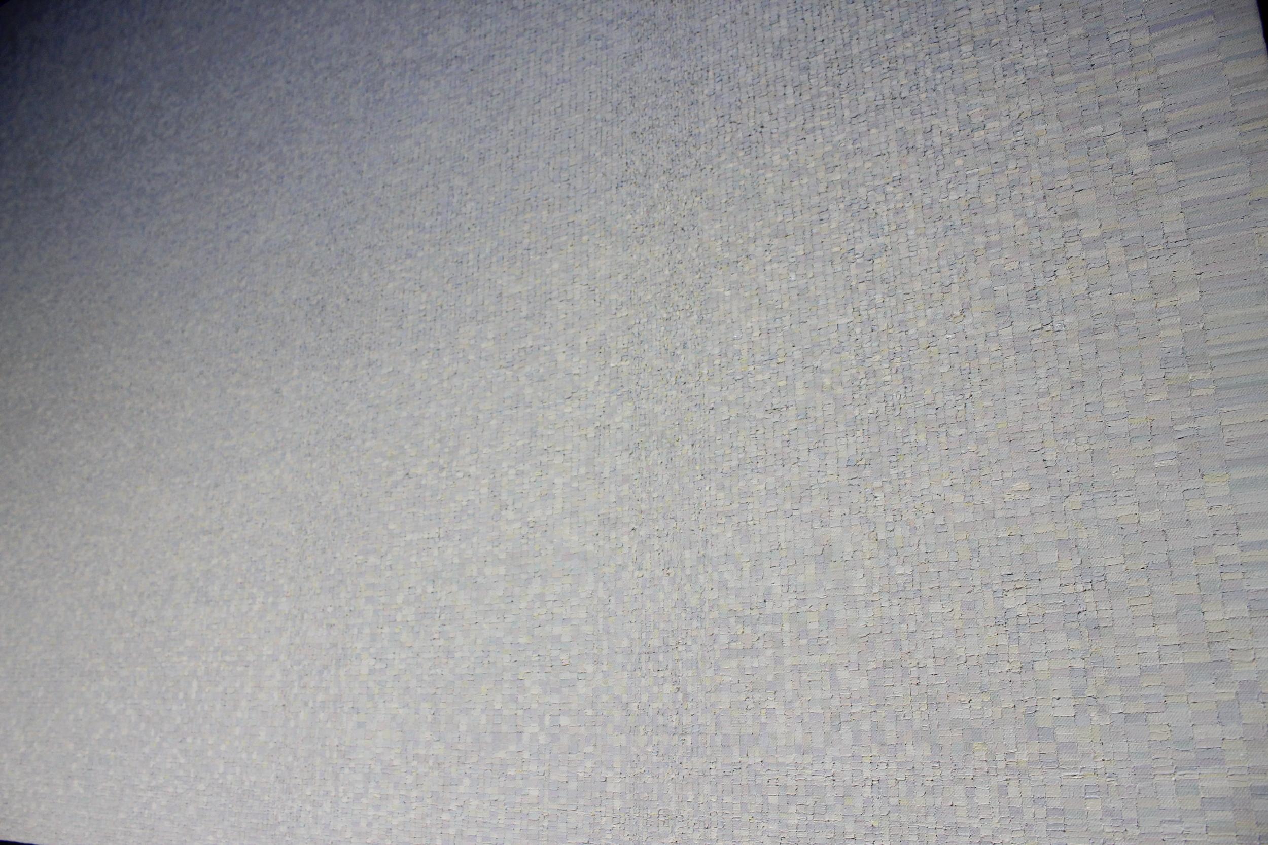 PaleComp.Detail_3.Johnson.jpg