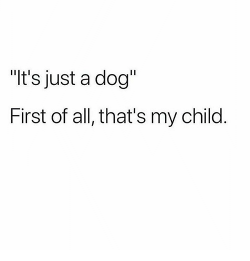 its-just-a-dog-first-of-all-thats-my-child-28525893.png