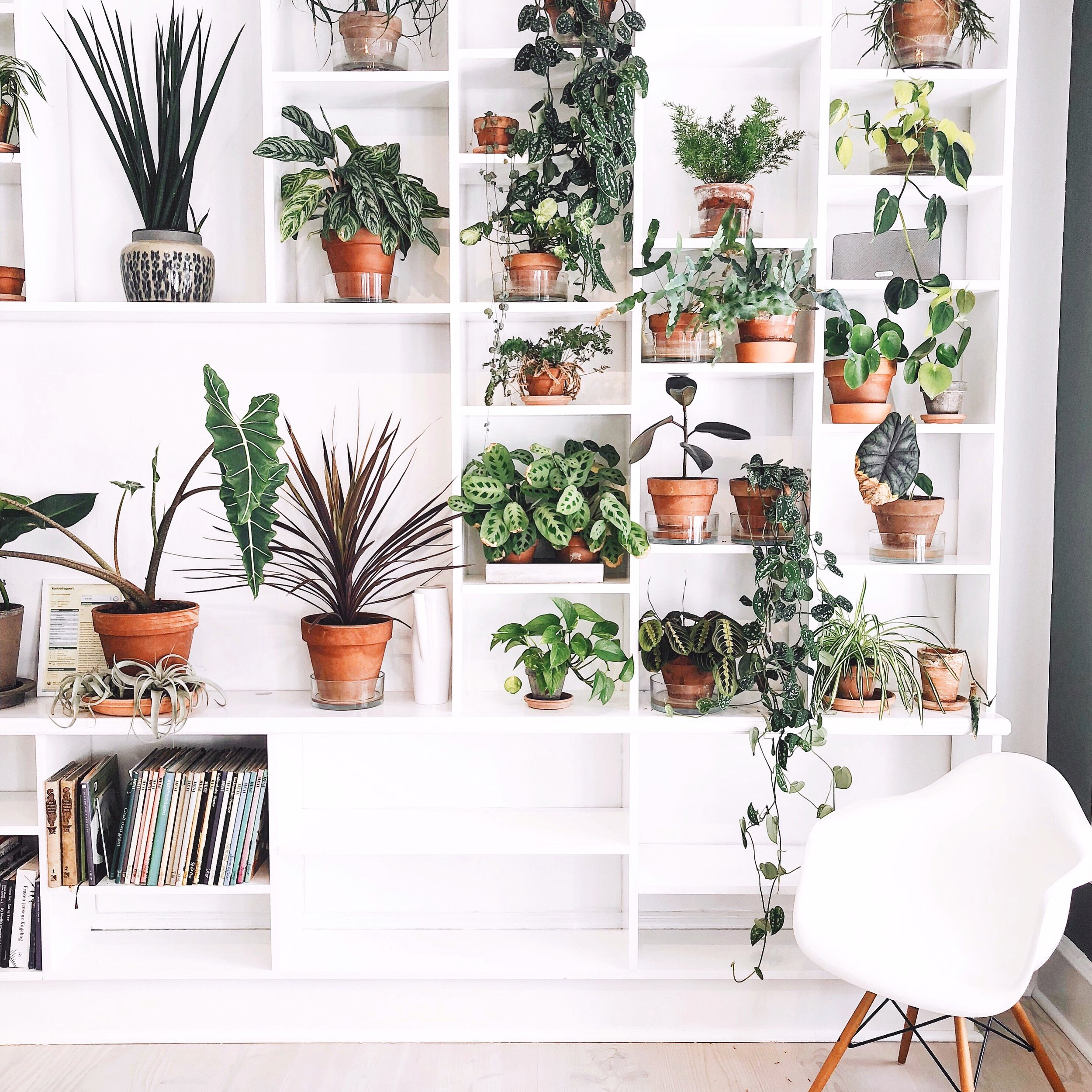 living_plant_wall_cph_cooking_class