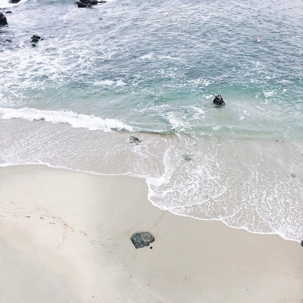 beach la jolla