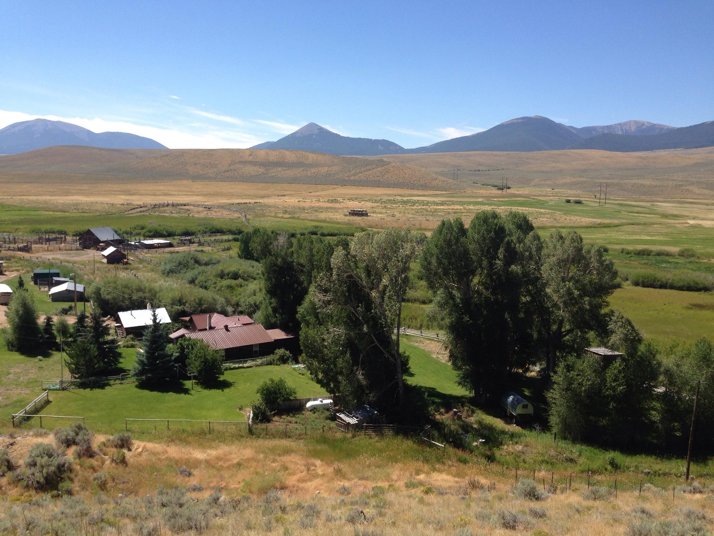 Montana lawns.
