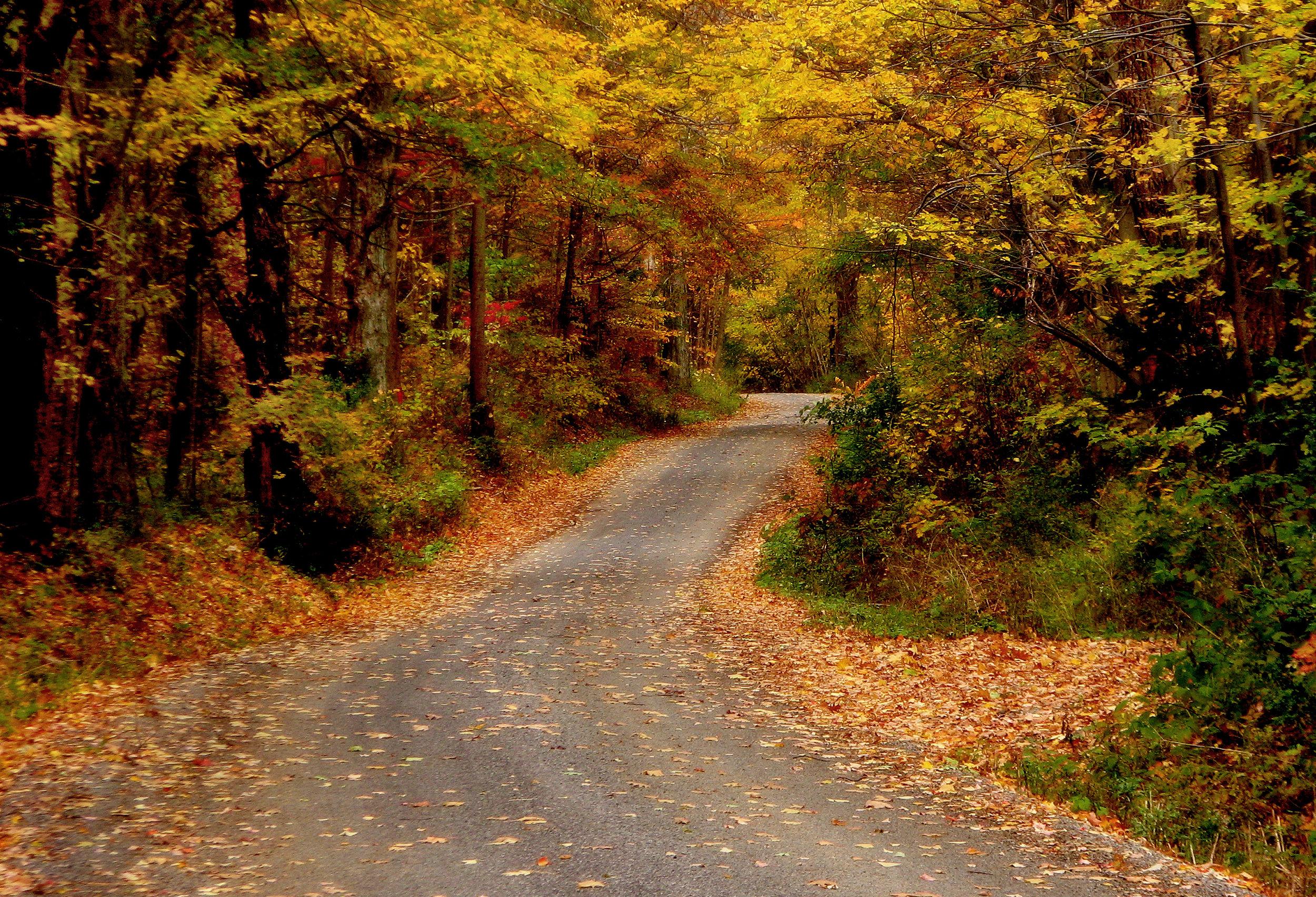 Road+Oct+28+2007+036+-273217406-O.jpg