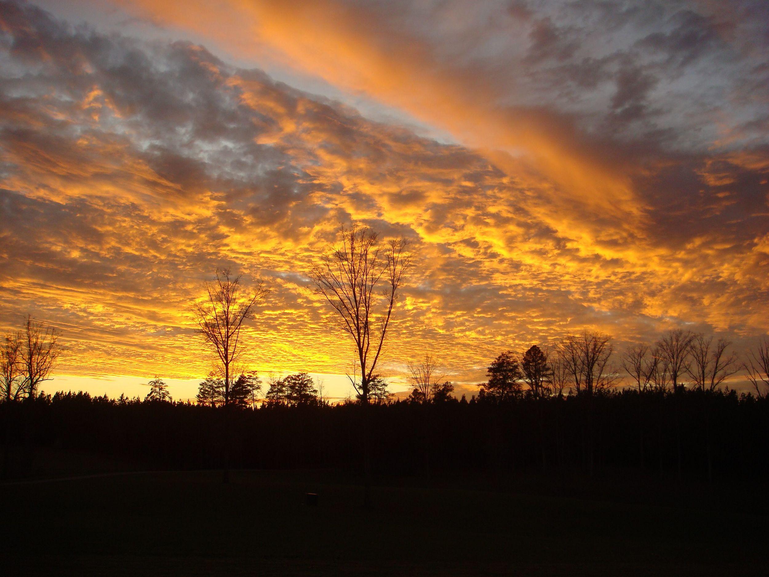 Riverview Sunset.jpg