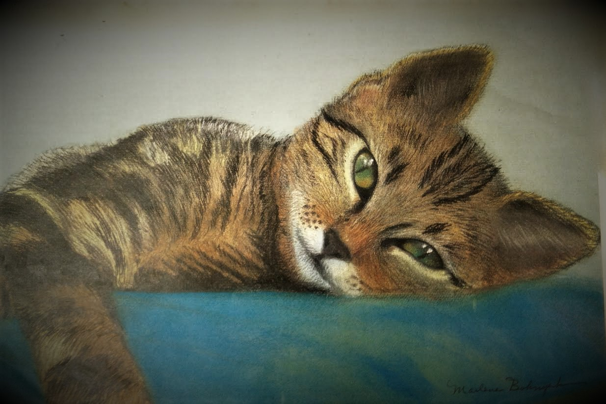 My first of many cat portraits..... larger than life size, she's passed years ago, but the family will always have this as a tender memory of her! I enjoyed the challenge of the textured fur compared to the smooth wetness of the eyes - Marlene