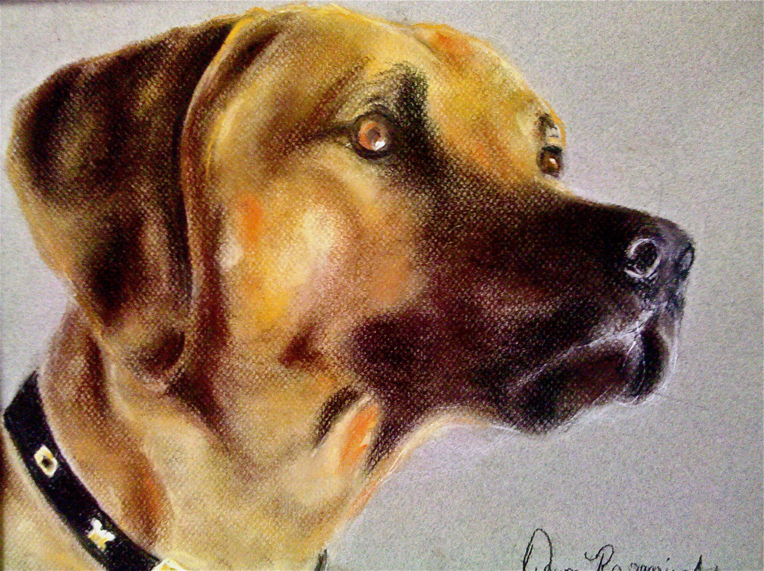 Another adult student's work this one by Dawn... first time working in pastel!