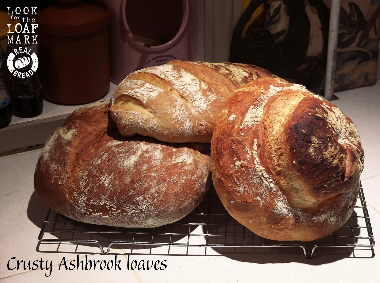 Crusty Ashbrook loaves .jpg