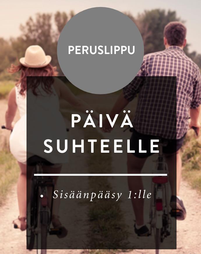 ps_peruslippu.png