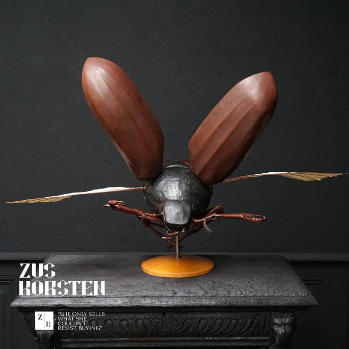Anatomic-Beetle-02.jpg