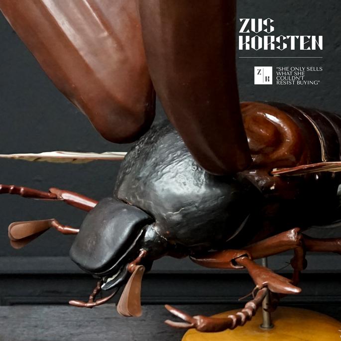 Anatomic-Beetle-05.jpg