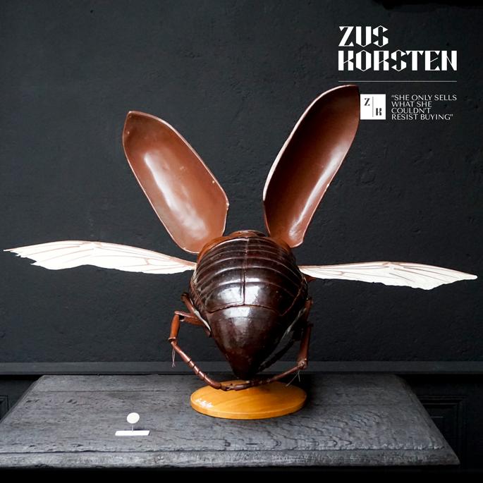 Anatomic-Beetle-06.jpg