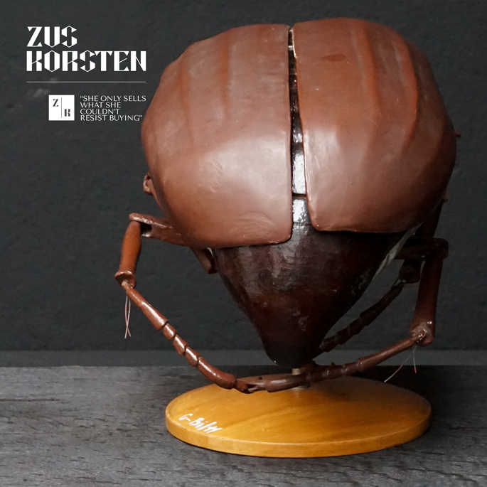 Anatomic-Beetle-09.jpg