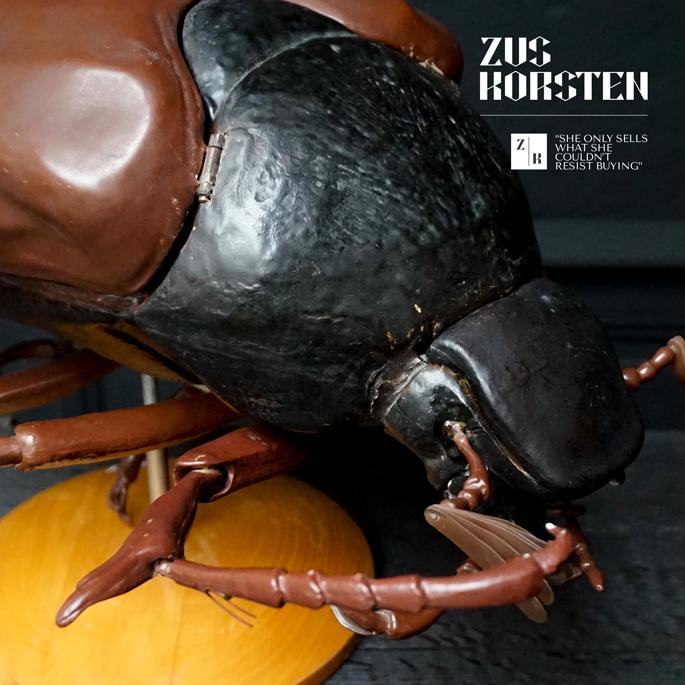 Anatomic-Beetle-10.jpg