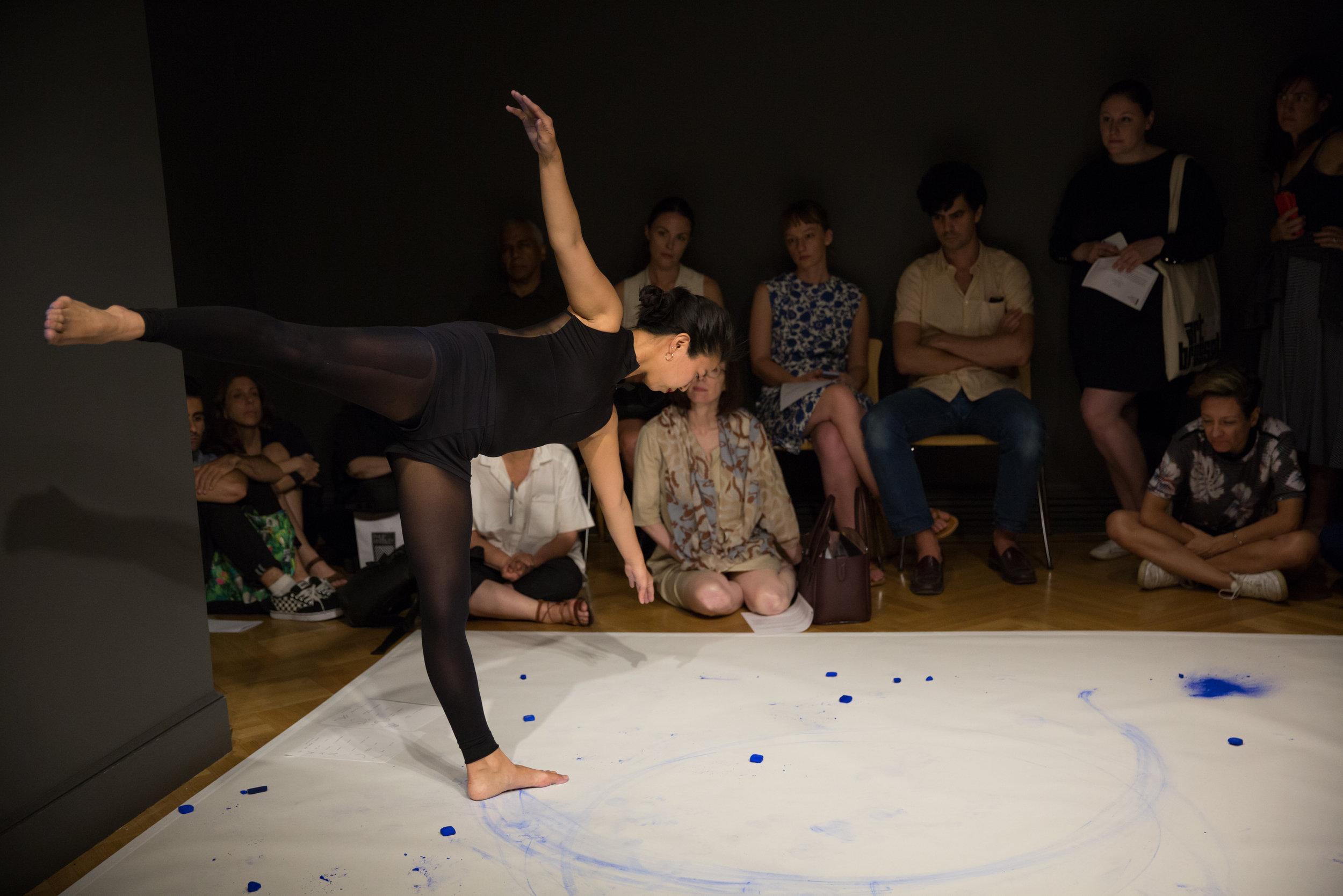 Analemma Performance 2017