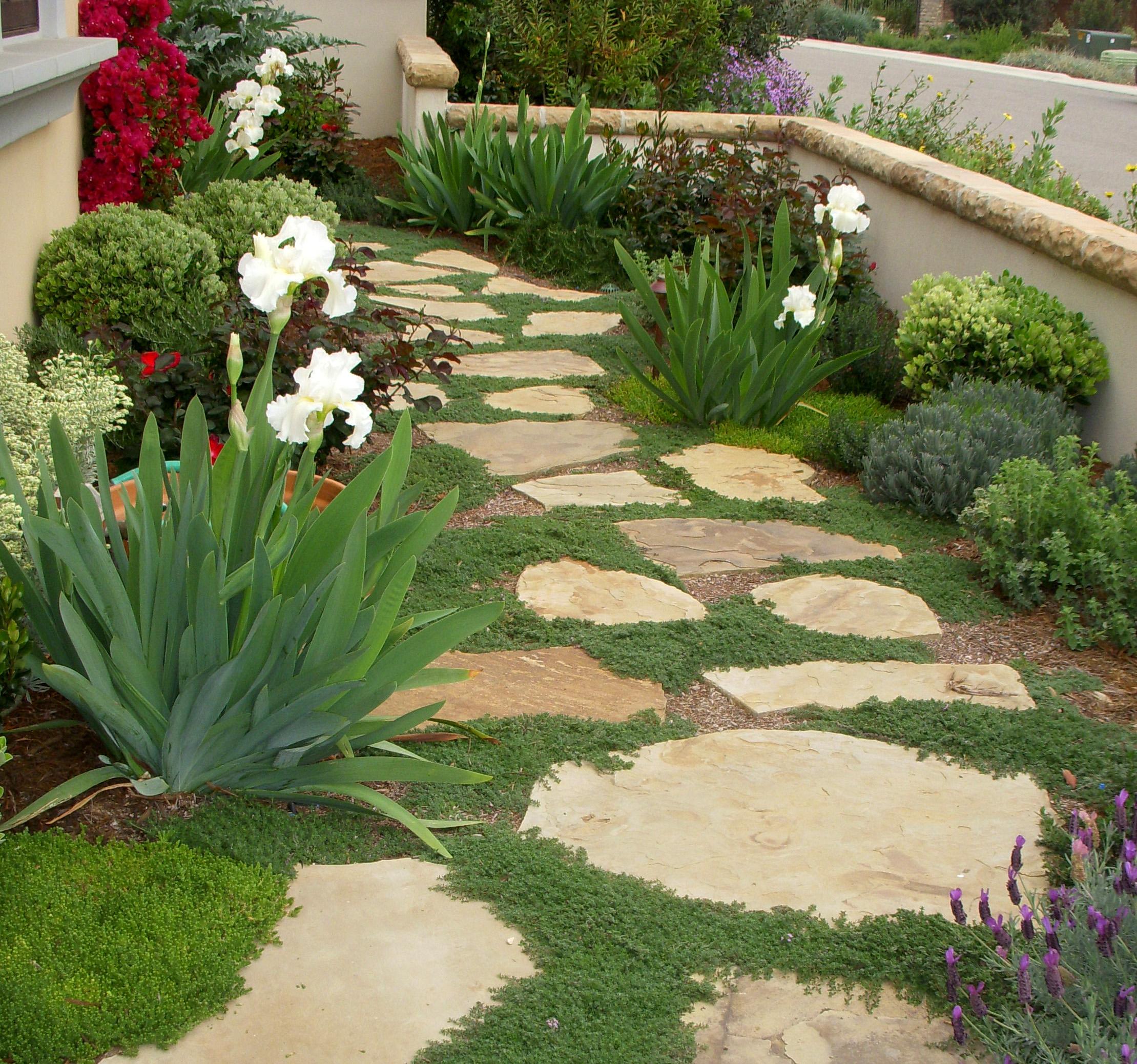 Robinson garden.JPG