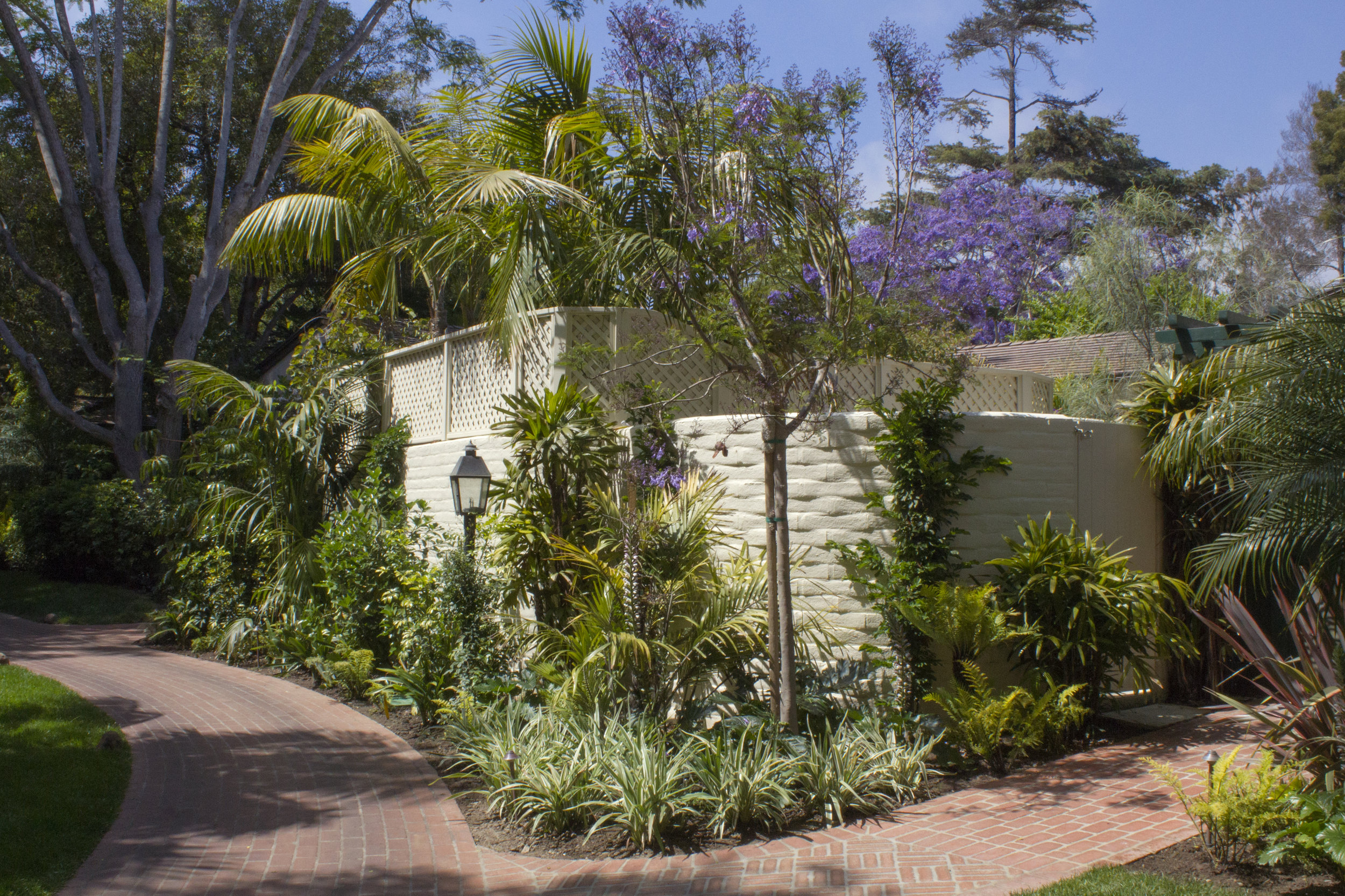 Establishing screening with mature plants to sofent the privacy walls.