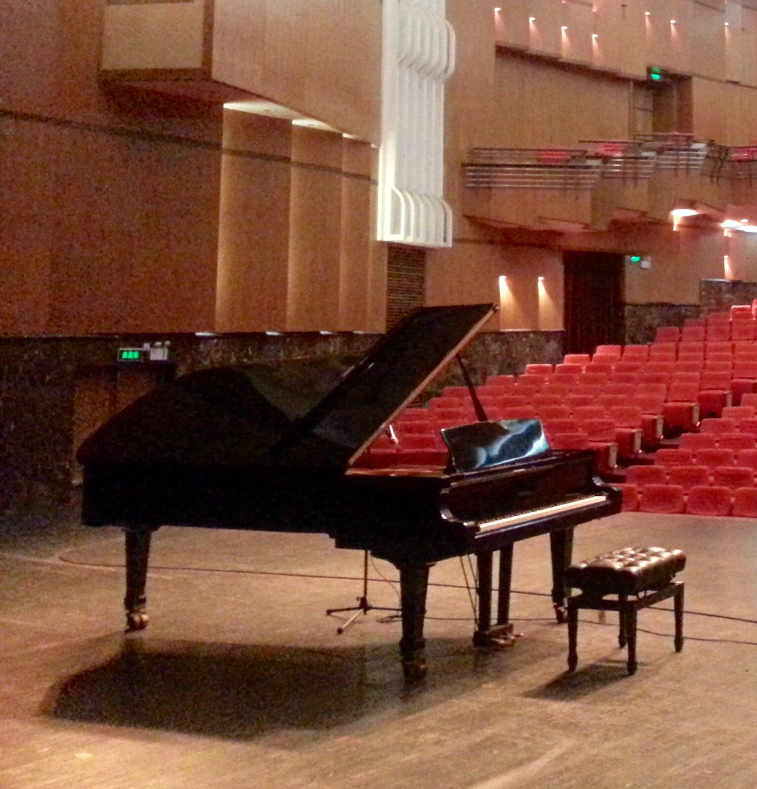 THE WINNER: My favorite of the China Tour 2015 instruments, this German Steinway delivered on all levels to the maximum. Beautiful colors, clear tone, an inspiration all around. Bravo bravissimo!