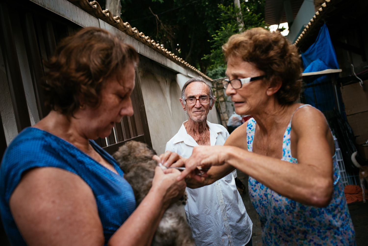 Euracy Aguiar Prado, 80, (center) looks on as his wife, Edina Ferreira Prado, 70, picks off a tick from a puppy that is about to be adopted. Rio de Janeiro, Brazil, 03-15-2015.