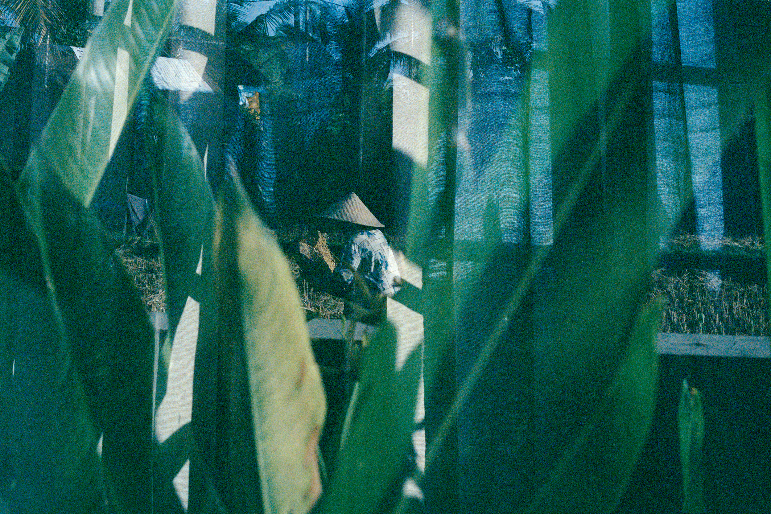Sifting Through Life, analogue double exposure, Bali 2014