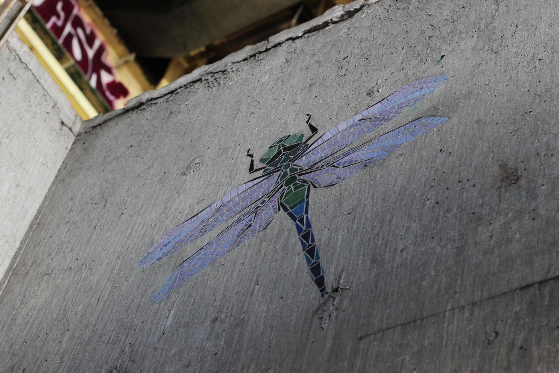 dragonfly2.jpeg